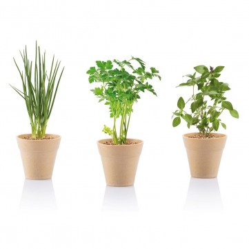 Herb gardenP269.399