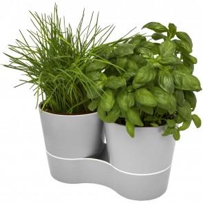 Herbs twin kitchen pot