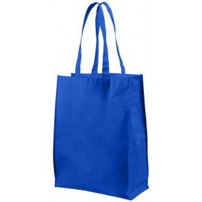 Conessa medium shopping tote bag