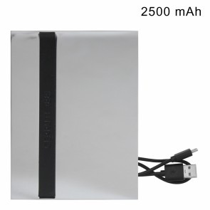 Power bank Dispatch