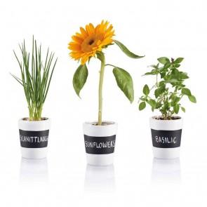 3pcs herb garden