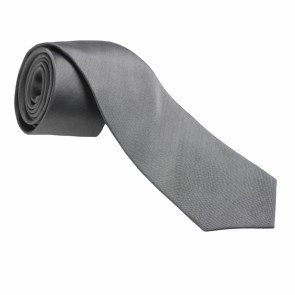 Silk Tie Costume Grey